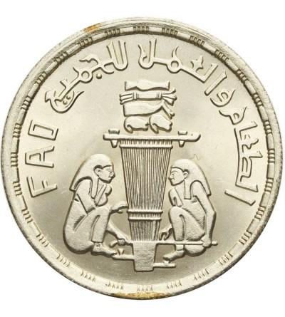 Egipt 1 pound (funt) 1981