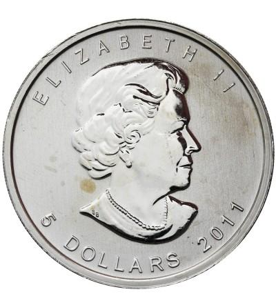 Kanada 5 dolarów 2011, niedźwiedź grizzly