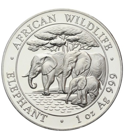 Somalia 100 Shillings 2013, Elephants