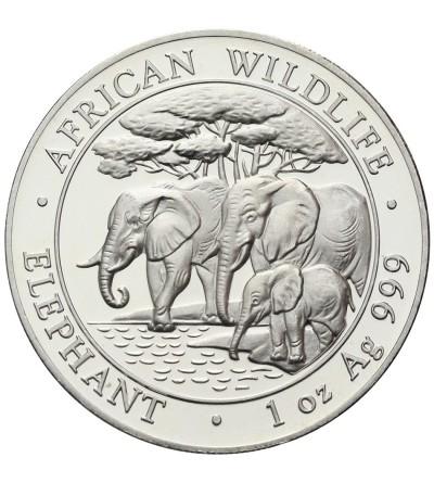 Somalia 100 szylingów 2013, słonie