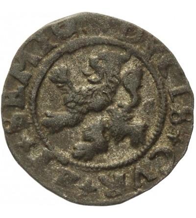 Kurlandia szeląg 1577, Mitawa
