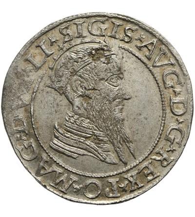 Czworak 1568, Wilno
