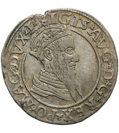 Czworak 1566, Wilno