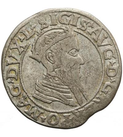 Czworak 1567, Wilno