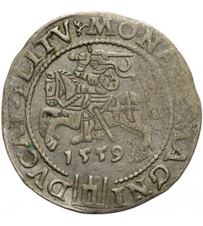 Grosz na stopę litewską 1559, Wilno