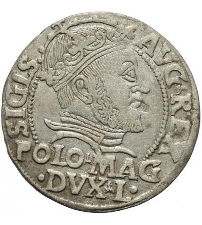 Grosz na stopę polską 1547, Wilno