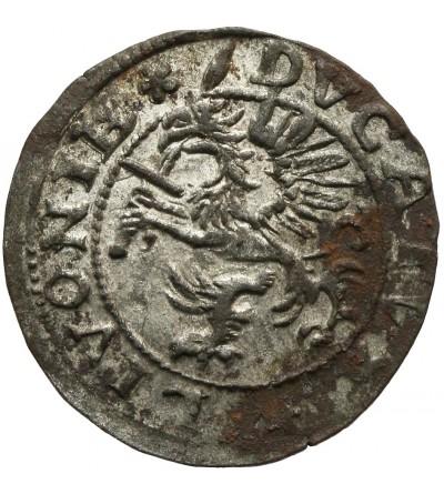 Szeląg 1572, Dalholm