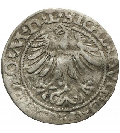Półgrosz 1565, Wilno