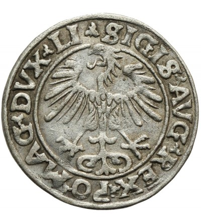 Półgrosz 1553 Wilno