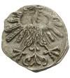 Denar 1563, Wilno