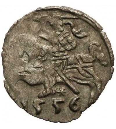 Denar 1556 Wilno