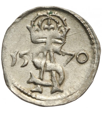 Dwudenar 1570, Wilno
