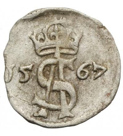 Dwudenar 1567, Wilno
