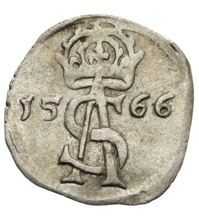 Dwudenar 1566, Wilno