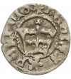 Poland. Polgrosz (1/2 Grossus) no date, Krakow Mint. John Albert 1492-1501