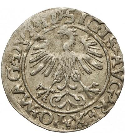 Półgrosz 1560, Wilno