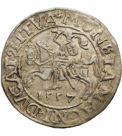 Półgrosz 1557, Wilno