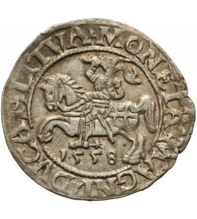 Półgrosz 1558, Wilno