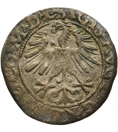 Półgrosz 1563, Wilno
