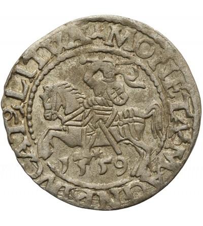 Półgrosz 1559 Wilno