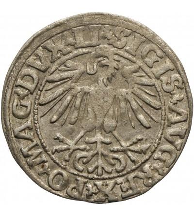 Półgrosz 1550, Wilno