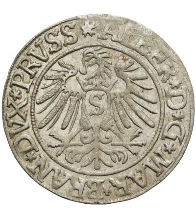 Prusy Książęce grosz 1537, Królewiec