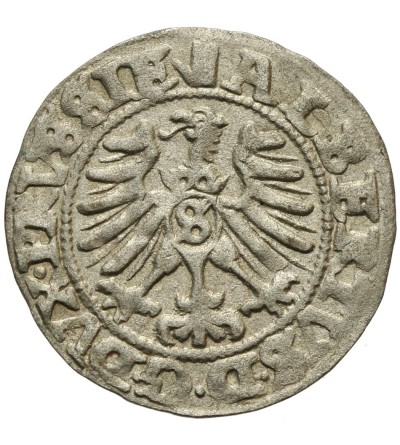 Prusy Książęce szeląg 1557, Królewiec