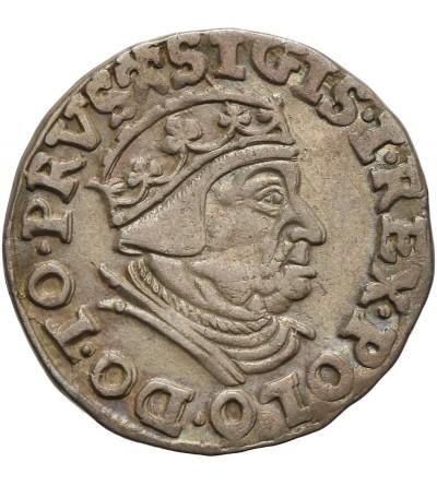Trojak 1539, Gdansk ( Danzig )