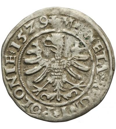 Grosz 1529, Kraków