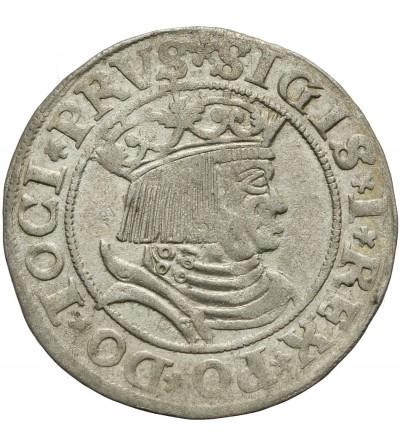 Grosz 1531, Toruń