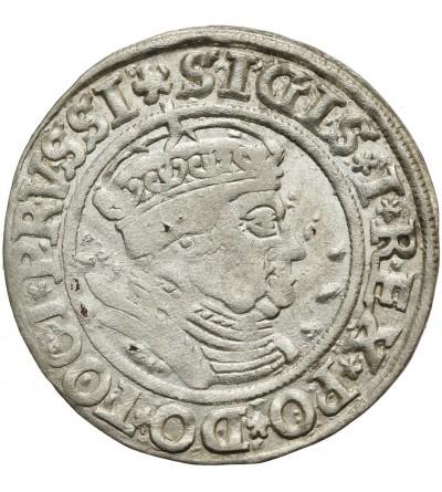 Grosz 1535, Toruń
