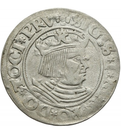 Grosz 1531, Gdańsk