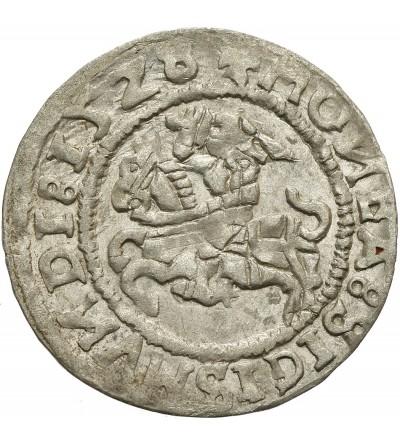 Półgrosz 1528, Wilno