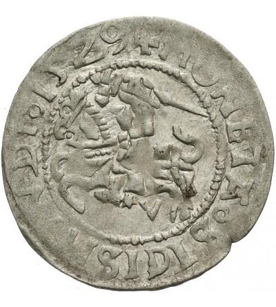 Półgrosz 1529 V, Wilno