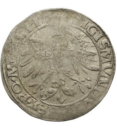 Grosz 1535 N, Wilno