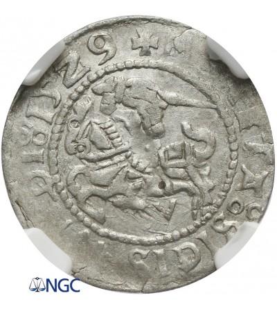 Półgrosz litewski 1529 V, Wilno - NGC AU 55