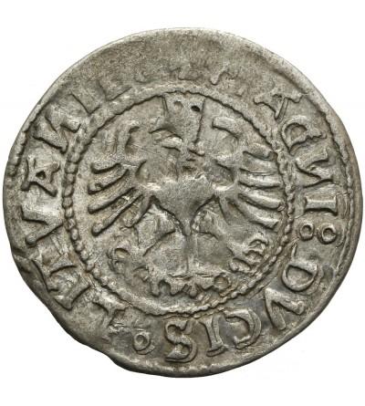 Półgrosz litewski 1528 V, Wilno