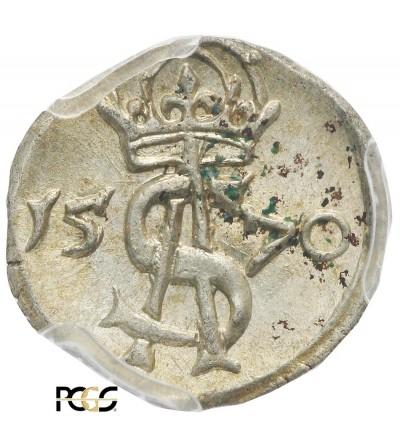Dwudenar (2 Denars) 1570, Vilnis mint - PCGS MS 62