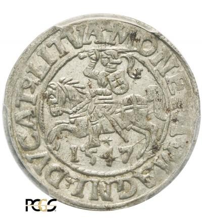 Półgrosz (1/2 grosza) 1547, Wilno - PCGS MS 62