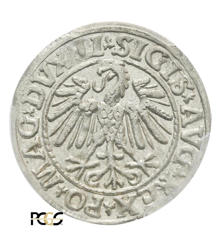 Polgrosz (1/2 Grosza) 1547, Vilnius Mint - PCGS MS 63