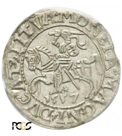Półgrosz (1/2 grosza) 1557, Wilno - PCGS MS 63