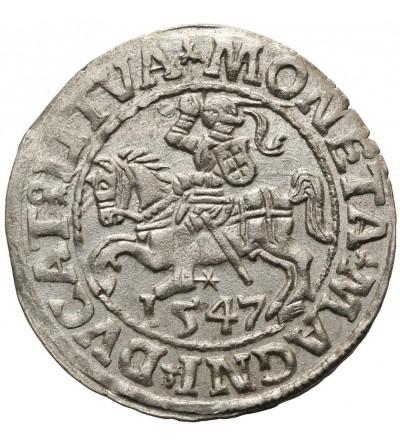 Półgrosz (1/2 grosza) 1547, Wilno