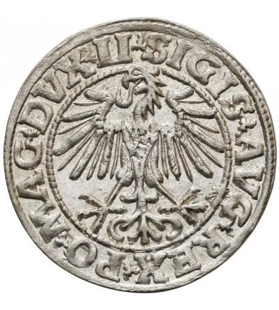 Polgrosz (1/2 Grosza) 1549, Vilnius Mint