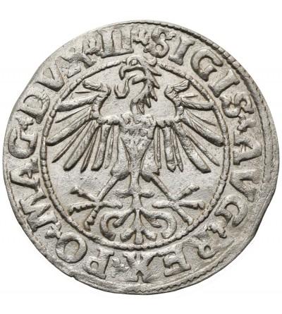 Polgrosz (1/2 Grosza) 1550, Vilnius Mint