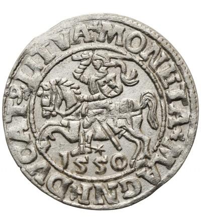 Półgrosz (1/2 grosza) 1550, Wilno