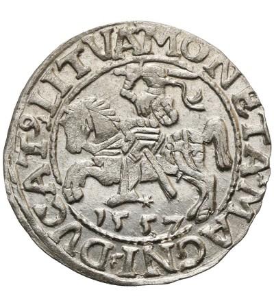 Półgrosz (1/2 grosza) 1557, Wilno