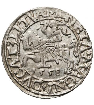 Półgrosz (1/2 grosza) 1558, Wilno