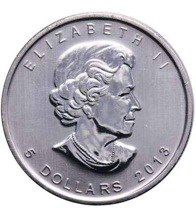 Kanada 5 dolarów 2013, bizon
