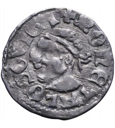 Polska / Węgry. Denar bez daty, Ludwik I Andegaweński 1342 / 1370-1382, jako król Polski.