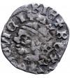Polska / Węgry. Denar bez daty, Ludwik I Andegaweński 1342 / 1370-1382
